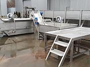 Мини линия для предреализационной подготовки, мойки, сортировки, фасовки овощей для реализации Краснодар