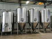 Пивоварня и пивзавод под ключ Москва