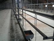 Стойловое оборудование для привязного содержания 100 голов Ижевск