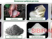 Приобретаем Минеральные удобрения Новосибирск