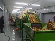 Линия мойки, очистки от кожуры, замачивания, переборки, фасовки, вакуумной упаковки овощей, картофел Москва
